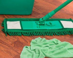 Dry & Wet Mops